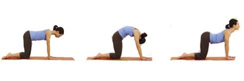 prenatal yoga center  preparing your pelvis for labor